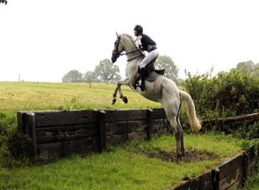Crossogue Equestrian Centre (Thurles)