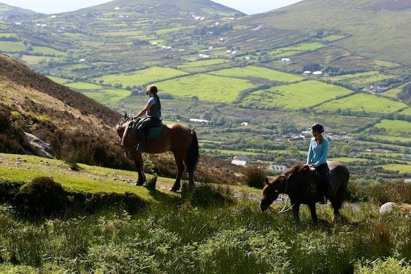Discover Tipperary Activities And Family Activities In